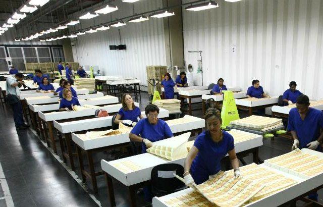 Casa da Moeda demite 212 funcionários para reduzir custos