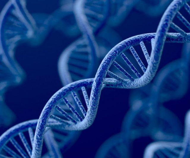 Cientistas descobrem nova forma de DNA nas nossas células
