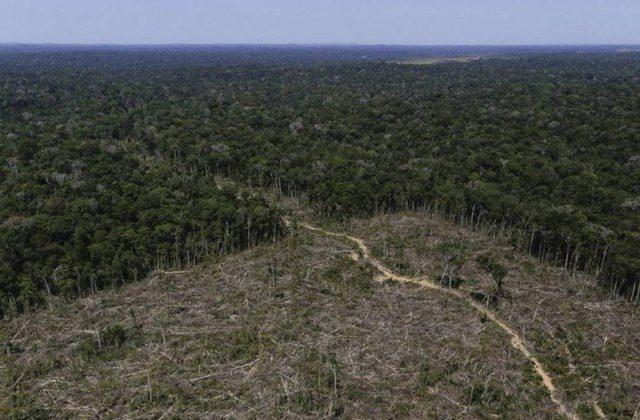 Fundo Amazônia tem cerca de R$ 2,9 bilhões parados e está sem atividade desde 2019