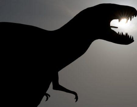 Escuridão teria ocasionado extinção dos dinossauros há 66 milhões de anos, aponta estudo