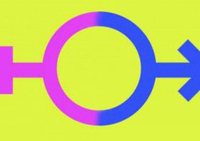Alemanha aprova projeto de lei para reconhecer terceiro gênero