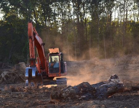 Desmatamento na Amazônia Legal bate recorde em abril