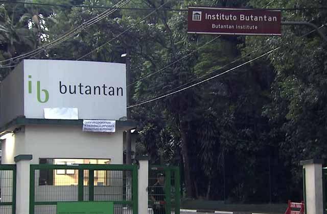 Governo de São Paulo anuncia início da produção da Coronavac no Butantan