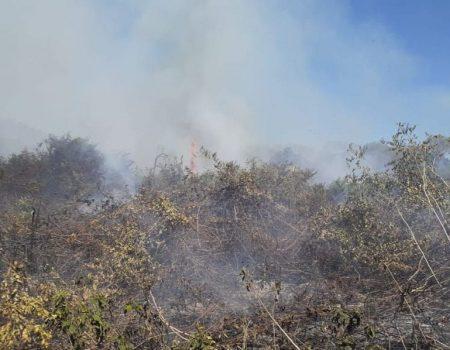 Governo reconhece situação de emergência no MS por causa dos incêndios florestais