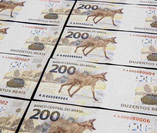 Ilustradora teria criado nota de R$ 200 com lobo-guará antes do BC