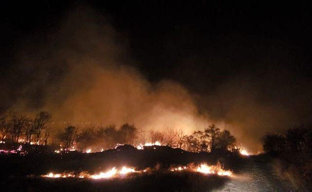 Incêndio destrói 90 hectares de vegetação no sudoeste da Bahia