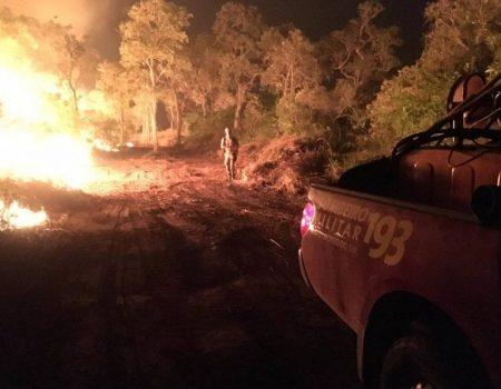 Incêndios no Pantanal   Fogo já destruiu mais de 2 milhões de hectares