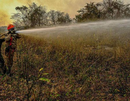 Governo federal destina R$ 3,8 milhões para combate a incêndios no Pantanal