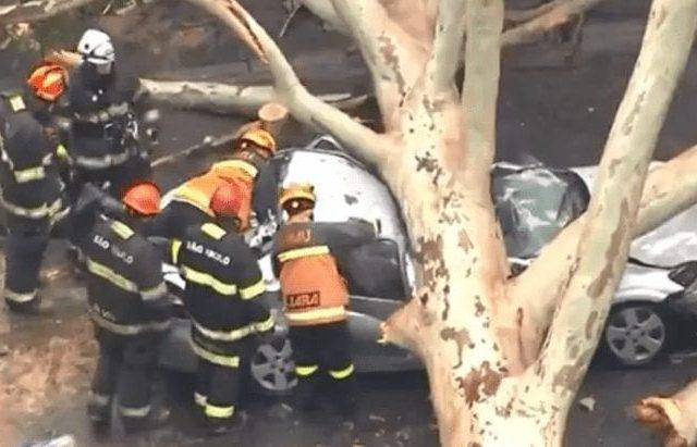Árvore atinge carro e mata uma pessoa em São Paulo