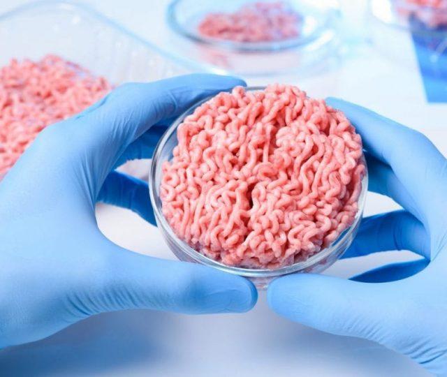 Singapura autoriza venda de carne de frango artificial