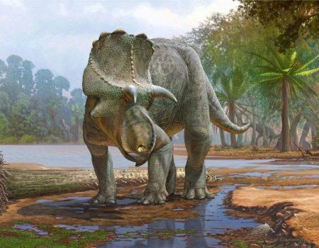 Arqueólogos encontram dinossauro de 82 milhões de anos nos EUA