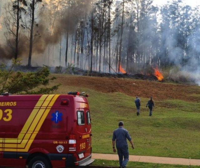 Empresário Celso Silveira, a esposa e 3 filhos morrem em queda de avião